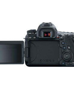 Canon 6D MKII screen out